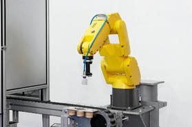 Controlling a Career in Robotics