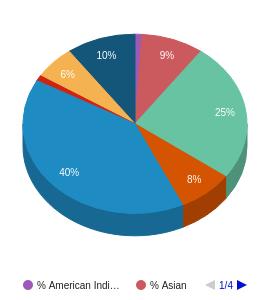 American River College Ethnicity Breakdown