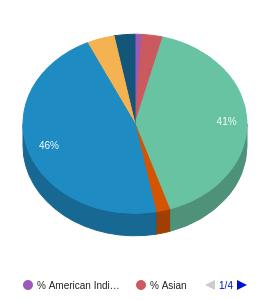 Columbia Basin College Ethnicity Breakdown