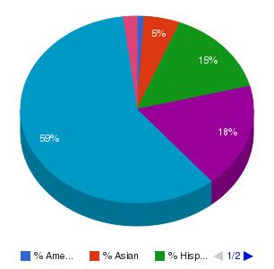 Community College of Aurora Ethnicity Breakdown