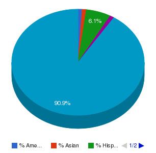Quinebaug Valley Community College Ethnicity Breakdown