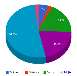 Anthem College-Phoenix Ethnicity Breakdown