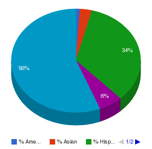 Garden City Community College Ethnicity Breakdown