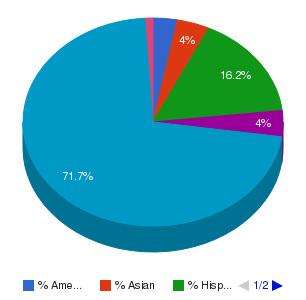 Mesa Community College Ethnicity Breakdown