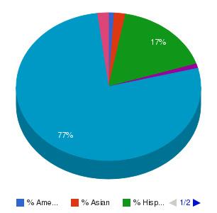 Mohave Community College Ethnicity Breakdown