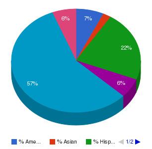 Refrigeration School Inc Ethnicity Breakdown
