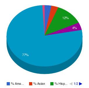 Scottsdale Community College Ethnicity Breakdown