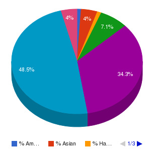 Tidewater Community College Ethnicity Breakdown