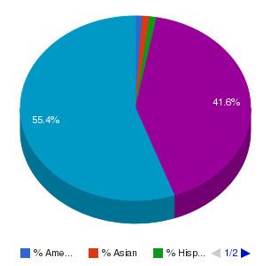 ITI Technical College Ethnicity Breakdown