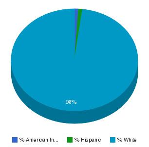 North Central Missouri College Ethnicity Breakdown
