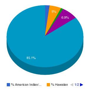 Dawson Community College Ethnicity Breakdown