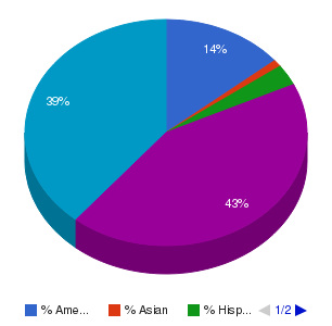 Bladen Community College Ethnicity Breakdown
