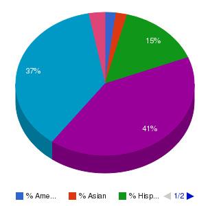 Sanford-Brown College-West Allis Ethnicity Breakdown