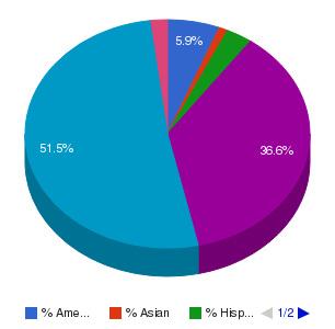 Blue Cliff College-Houma Ethnicity Breakdown