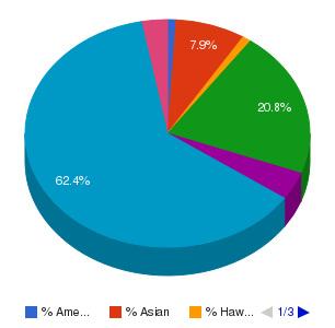 Carrington College California-Citrus Heights Ethnicity Breakdown
