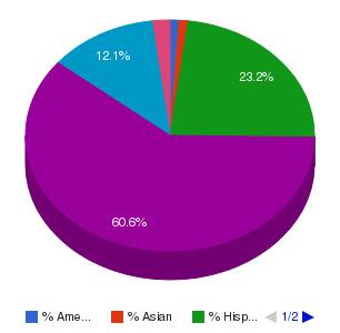 Centura Institute Ethnicity Breakdown